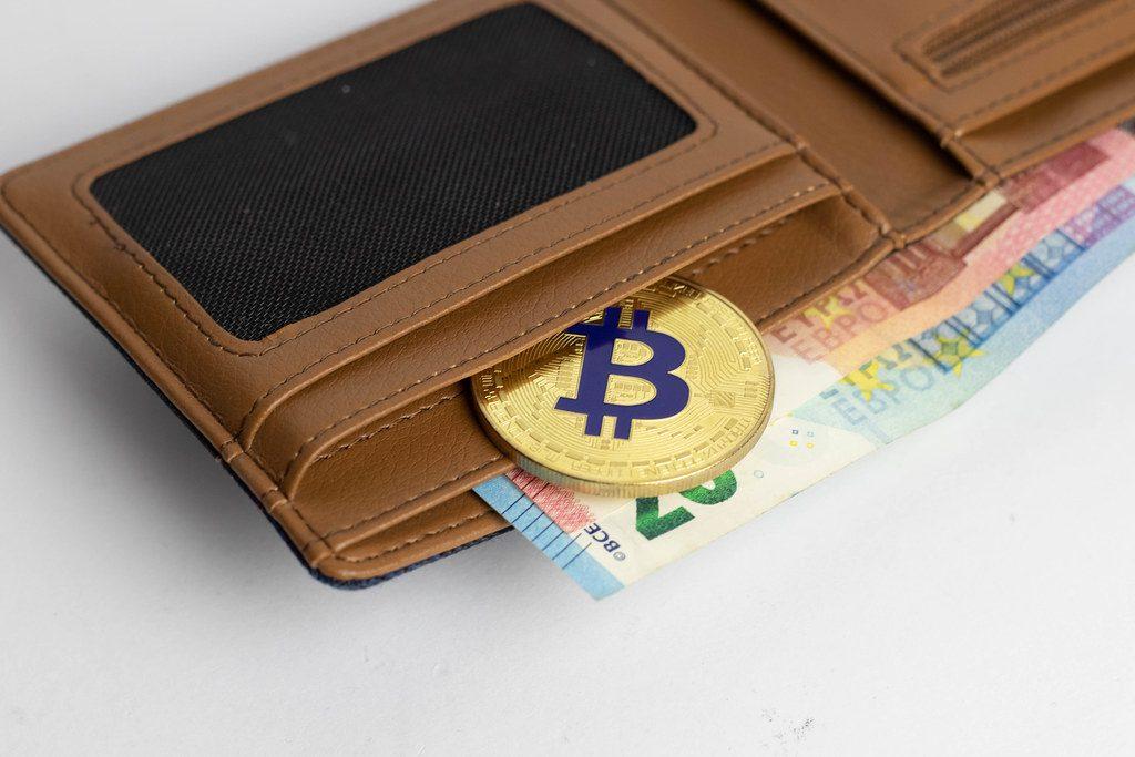 wallet de criptomoedas